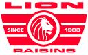 RISICO logo